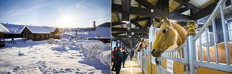 [左]禾木村、[右]野馬國際生態園