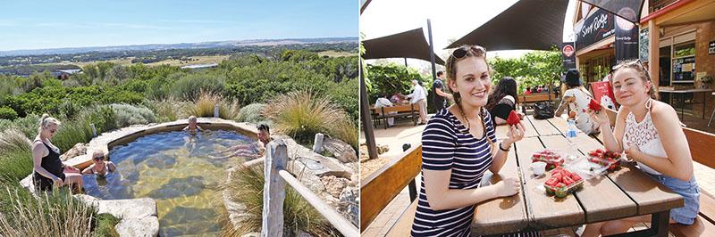 [左]莫寧頓半島溫泉體驗在大自然下泡溫泉、[右]墨爾本體驗無敵大顆草莓